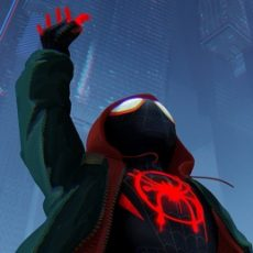 Into the Spider-Verse… and Beyond!