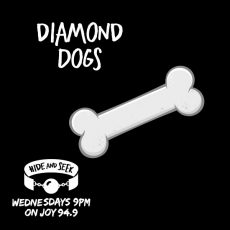 "10. ""Diamond Dogs"" – Pup Play"