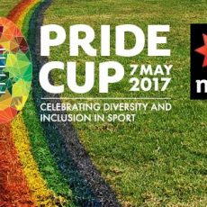 PRIDE CUP 2017 Highlights