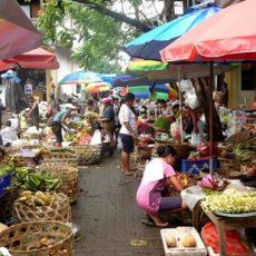 Z & G Visit The Market