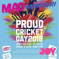 Come hit a wicket or two for Proud Cricket Day 2018