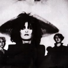 Pleasure Symbols and Siouxsie And The Banshees