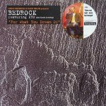 15 Bedrock - For what you dream of