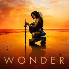 The Wonderful World of Wonder Woman