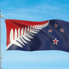 https://www.govt.nz/assets/d40f9499-topfour/10963-images/Silver-fern-red-white-and-blue-hero.jpg