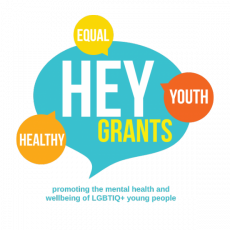 Healthy Equal Youth Partners