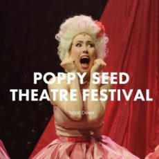 Dusty, Animal, Poppy Seed Theatre Fest, Melb Musical Theatre Fest