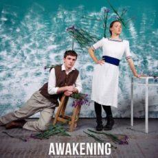 US indie Film Fest, Bowery Theatre, Awakening, Van Gogh, ABBA-Fab