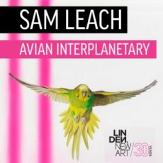 Interview:Artist Sam Leach on his exhibition Avian Interplanetary