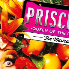 INTERVIEW:  David Harris, Priscilla Queen of the Desert