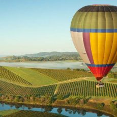 Yarra Valley Tourism and Hospitality