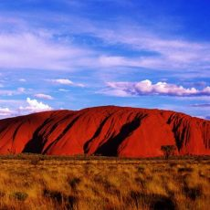 Uluru Recognition Talks at home & Gender Neutral Uniforms & Bathrooms in NZ