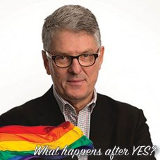 What happens after YES? Community Forum : David Marr