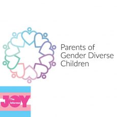 How can allies and families help champion the rights of trans and gender diverse people?