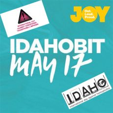 IDAHOBIT, what's it ACTUALLY mean?