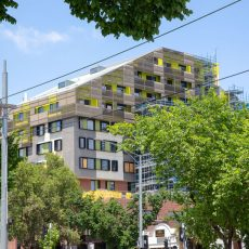 Vincentcare's Rainbow Tick and a new approach to homelessness