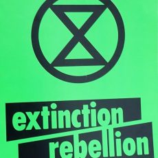 'I volunteered to be one of the arrestees': inside the Extinction Rebellion protests