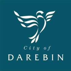 Darebin affirms the Darlington Statement, makes commitment to intersex rights