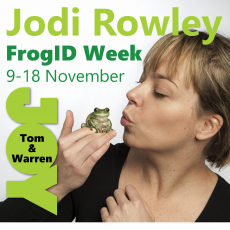 Jodi Rowley – FrogID Week