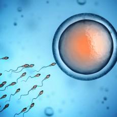 We Need Sperm – Monash IVF