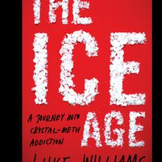 The Ice Age – Luke Williams