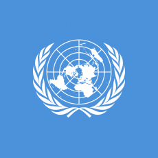 United Nations: A new voice for LGBTI people