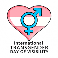 Giving Visibility to Trans Warriors