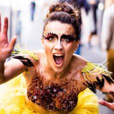 The 2017 Melbourne Fringe Festival